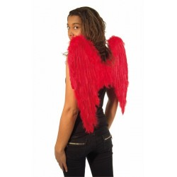Ailes rouges
